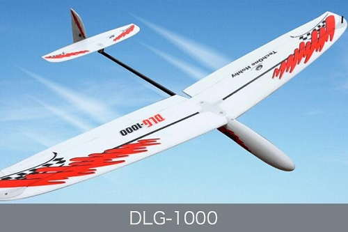 Techone 1000mm DLG-1000 EPO DLG RC Glider Plane PNP No Radio